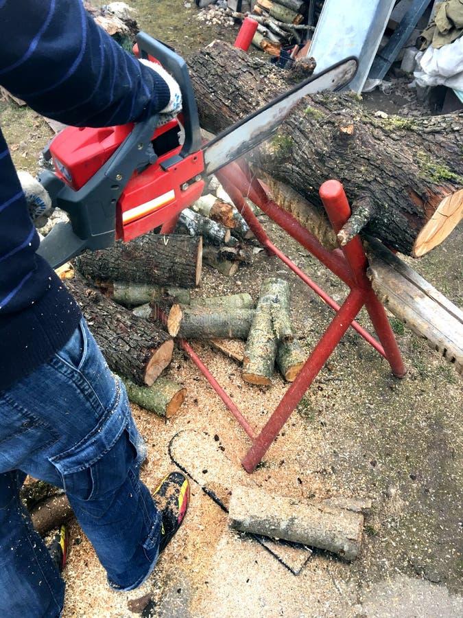 人准备木柴 他锯与锯的日志 库存图片