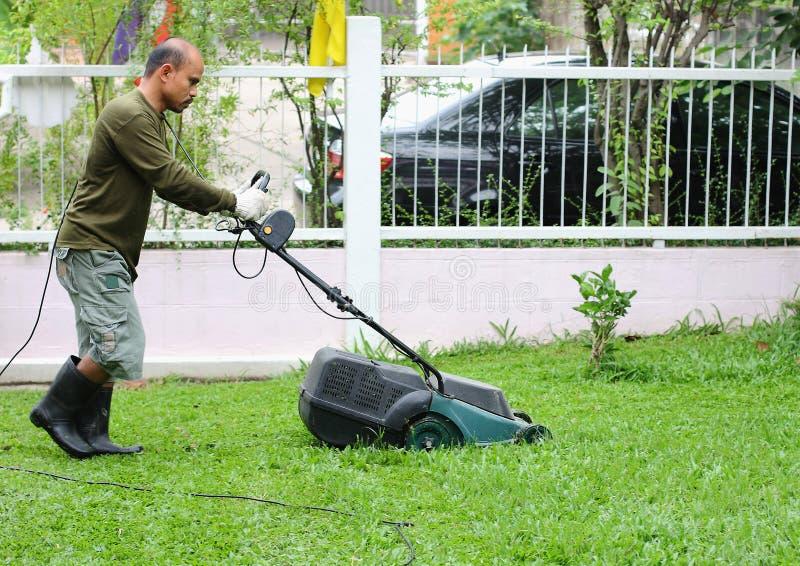 人切口草。使用刈草机。 图库摄影