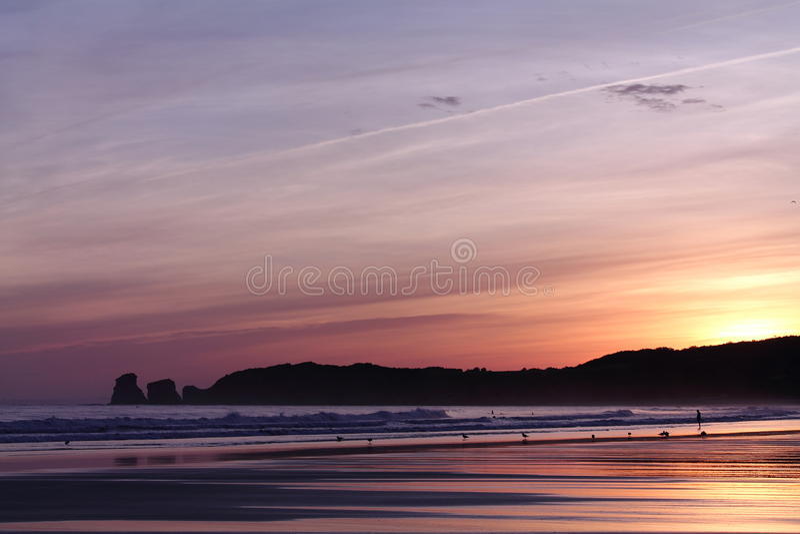 人剪影风景看法走在海滩和海鸥的在五颜六色的日出夏天天空在一个沙滩 免版税库存图片