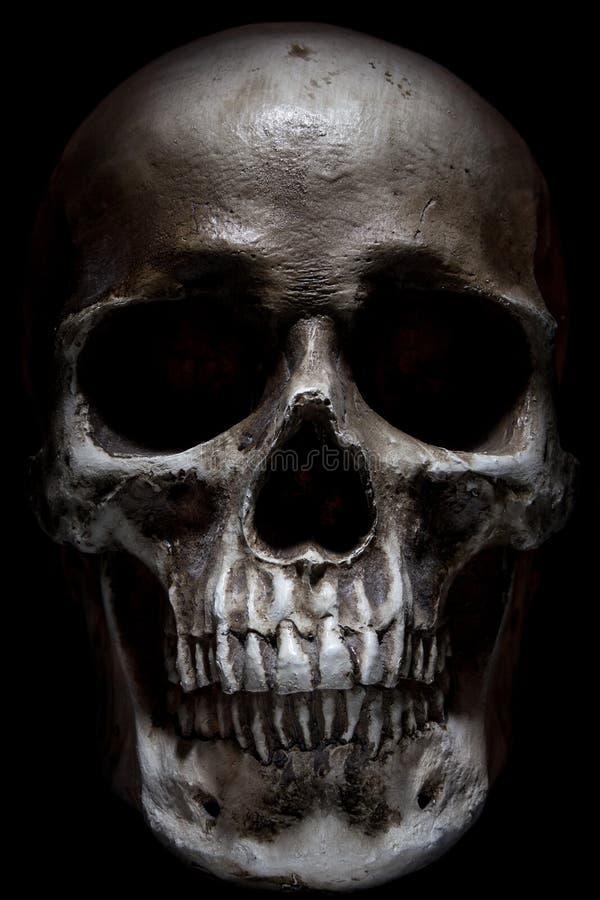 人力可怕头骨 图库摄影