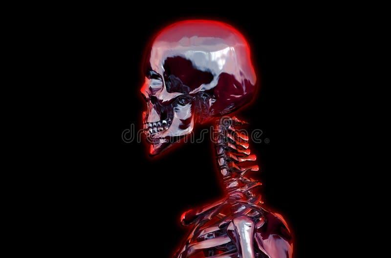 人力头骨 3d例证 库存例证