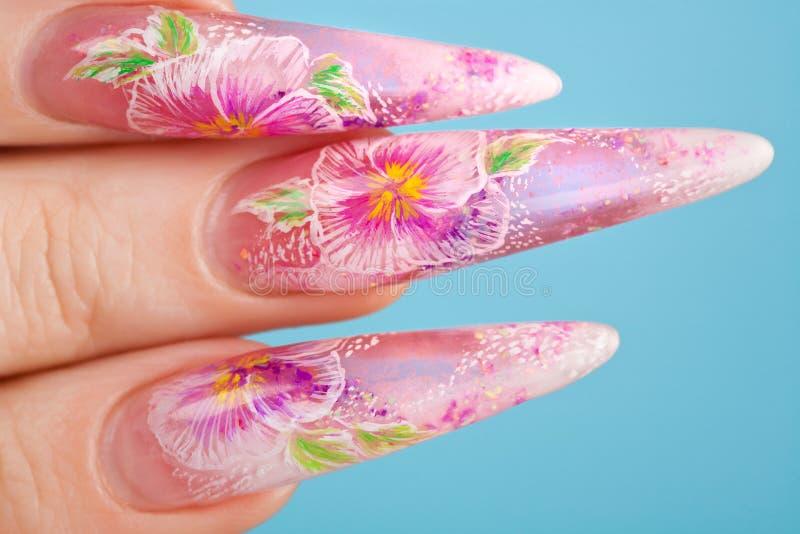 人力美丽的指甲盖的手指 库存照片