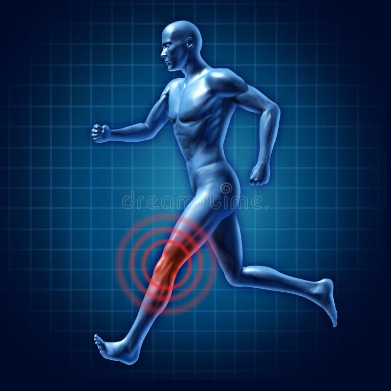 人力联合膝盖医疗痛苦赛跑者疗法 向量例证