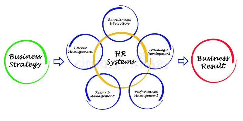 人力资源系统 库存例证