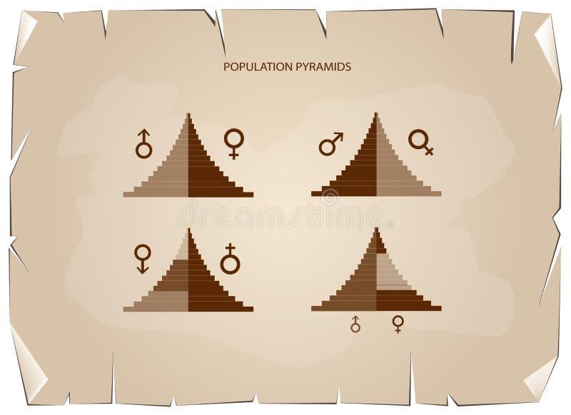 人口年龄金字塔图表细节取决于年龄和性 向量例证