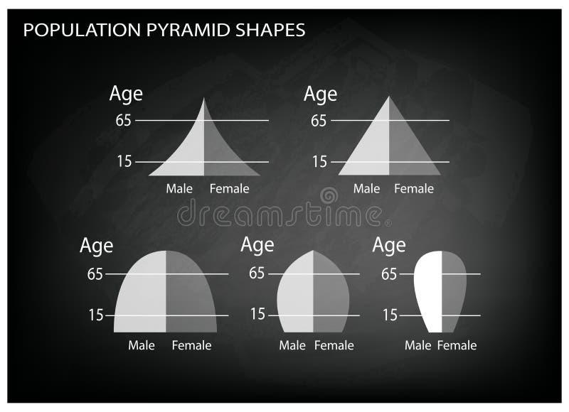 人口年龄金字塔的不同的类型在黑板背景的 皇族释放例证