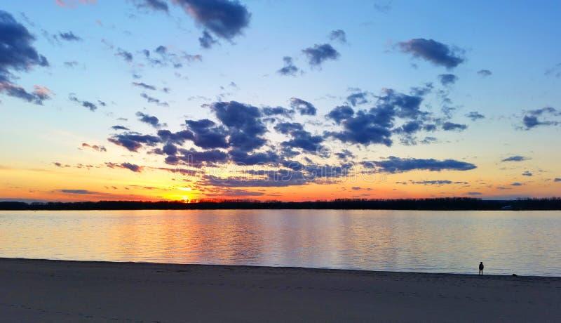 人和一条狗在海滩在日落期间 免版税库存图片