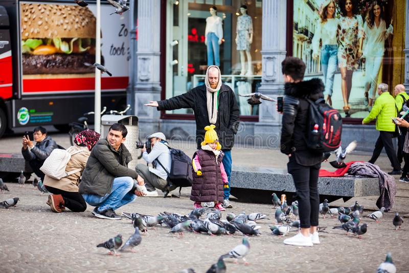 人哺养的鸽子在阿姆斯特丹老中区的水坝广场  免版税库存照片