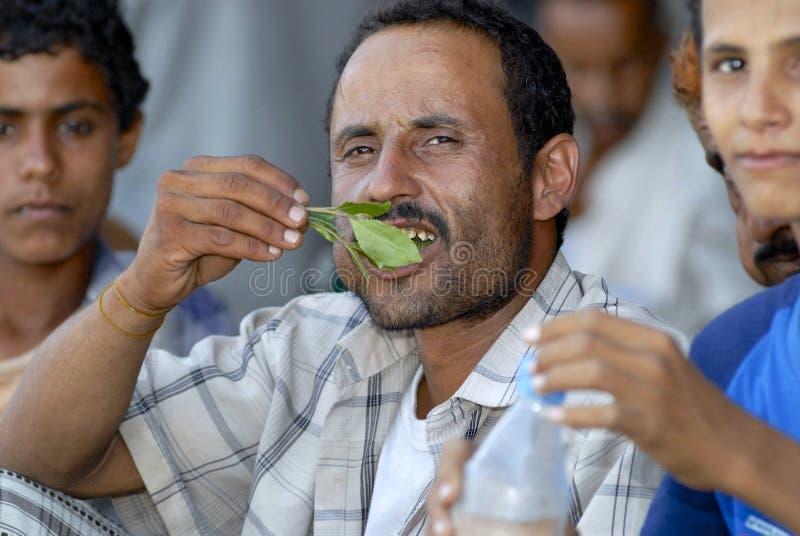 人嚼khat (可食的Catha)在地方市场上在拉赫季,也门 免版税库存图片