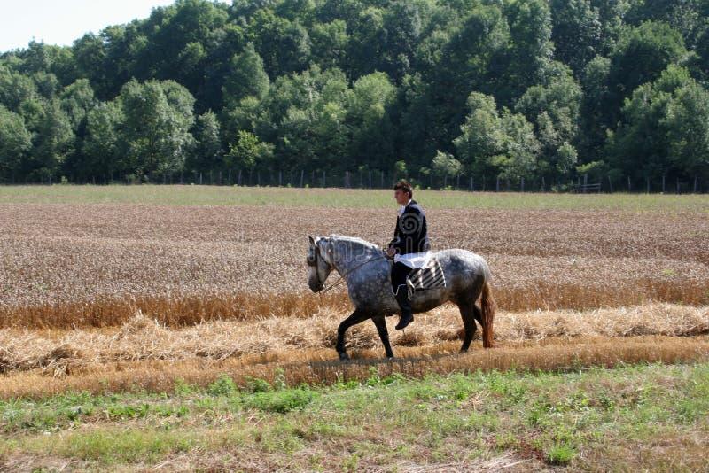 人在全国服装在马背上穿戴了,乘坐通过麦田领域 库存照片