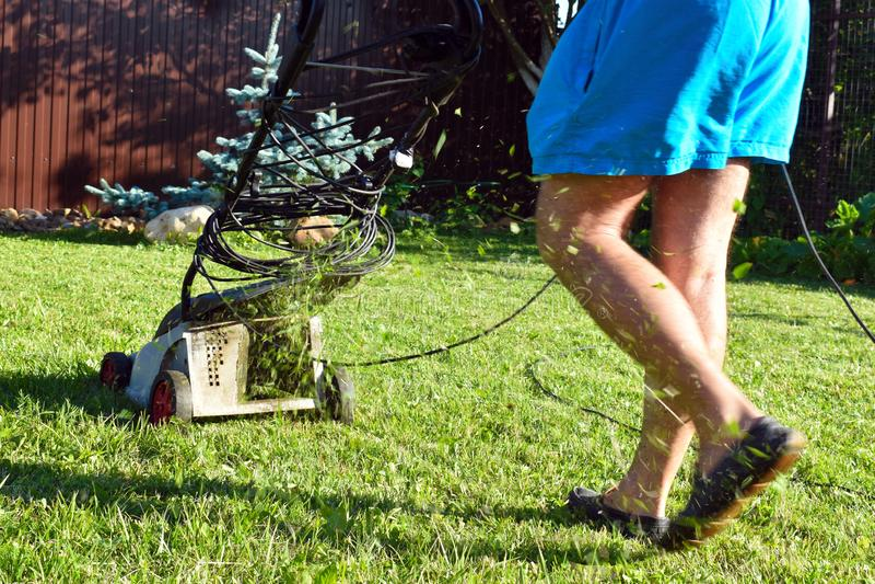 人在庭院里割绿色草坪在夏天 有电工刈草机的花匠 免版税库存照片