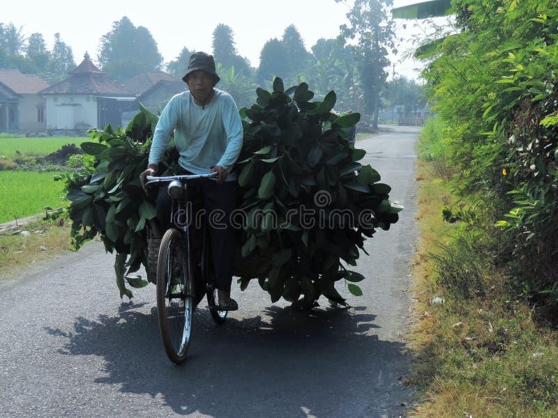 人在村庄 免版税库存图片