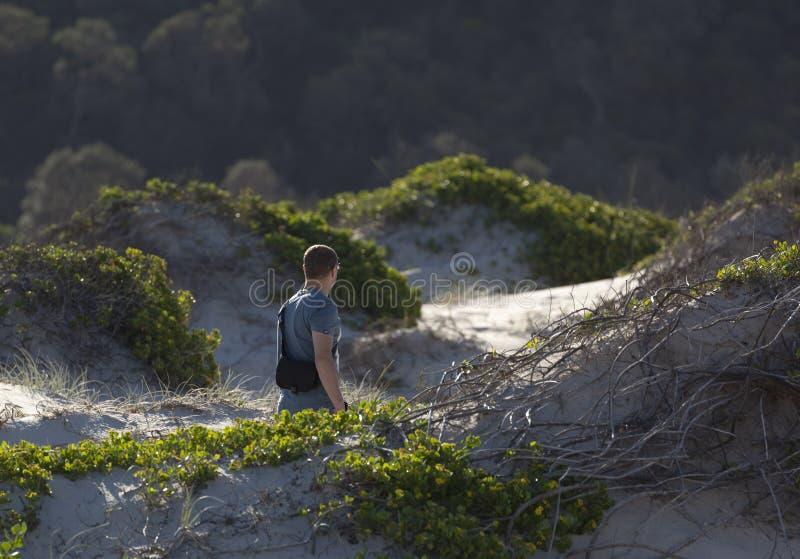人在沙丘走。芬戈郡海湾。澳大利亚。 库存图片