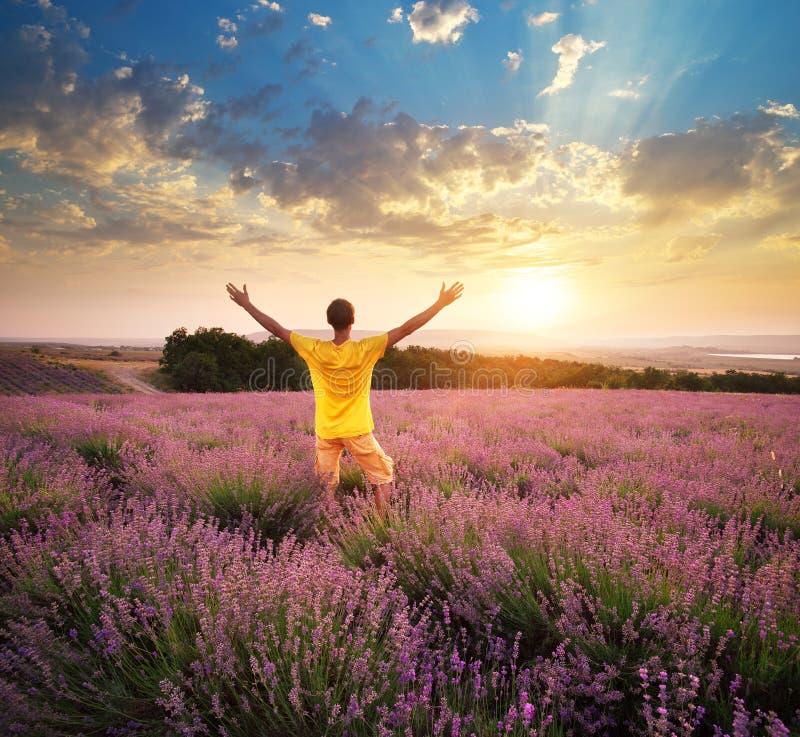人在淡紫色草甸  库存图片