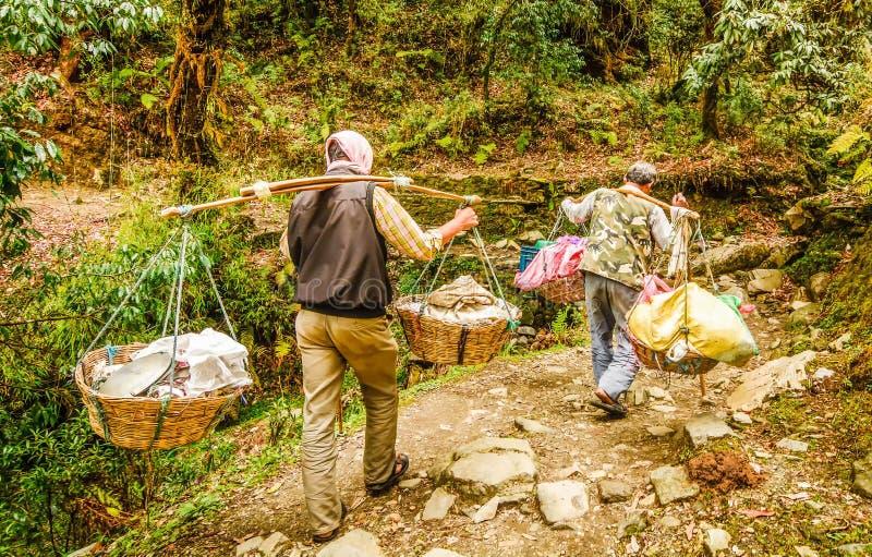 人在运载在他们的肩膀的尼泊尔一大担子 库存图片