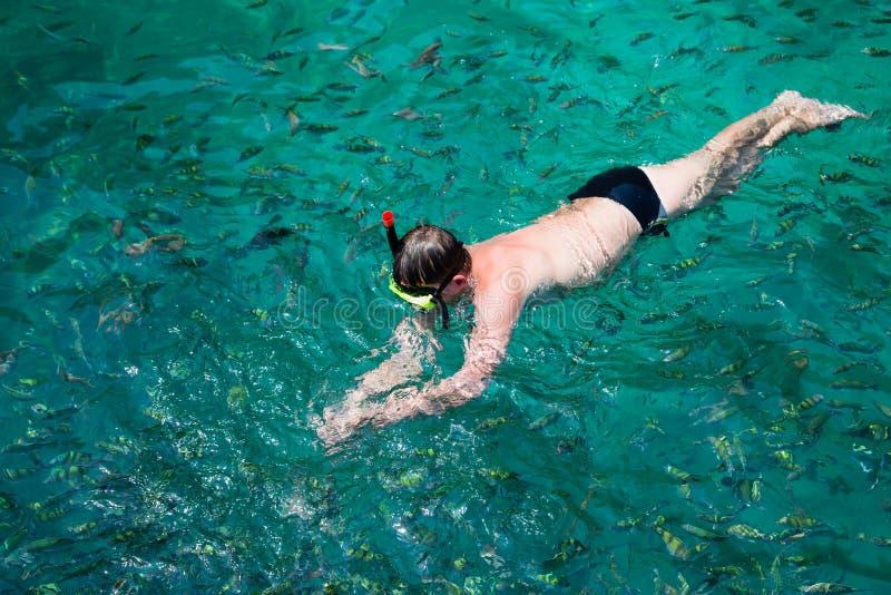 人在面具和废气管,泰国的鱼中游泳 库存图片