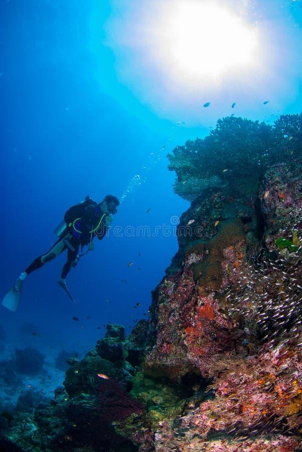 年轻人在Similan,泰国潜水深深 免版税图库摄影
