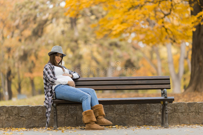 年轻人孕妇在秋天公园 库存照片