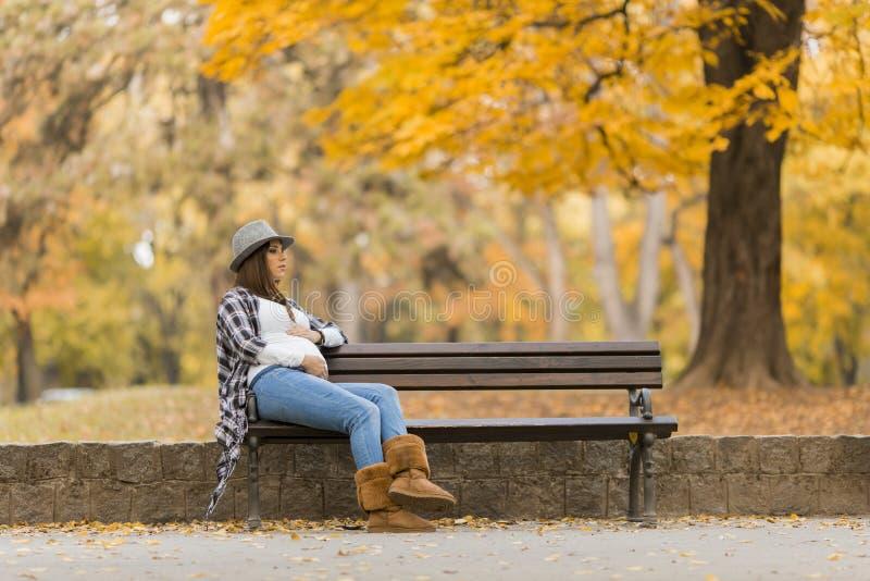 年轻人孕妇在秋天公园 库存图片