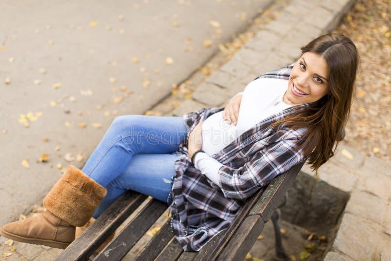 年轻人孕妇在秋天公园 图库摄影