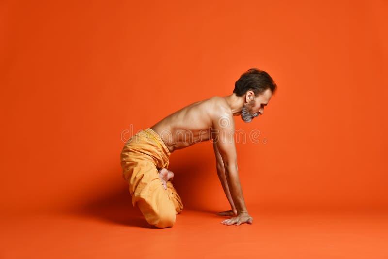 人实践的先进的瑜伽 图库摄影