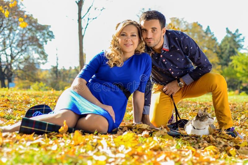 年轻人怀孕的夫妇坐黄色在公园离开 库存图片