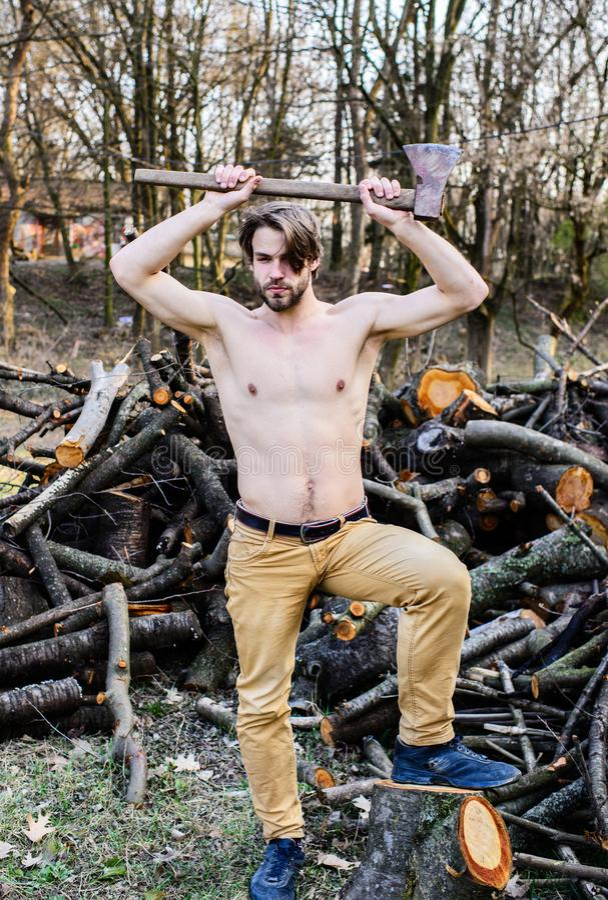 人成串珠状的残酷性感的伐木工人运载轴 男性休闲 伐木工人樵夫性感的赤裸肌肉躯干汇聚 库存图片