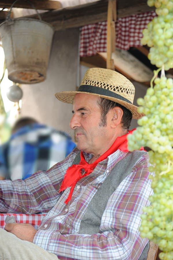 人打扮作为农夫 库存图片