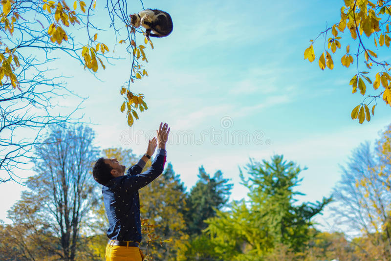 人投掷的猫在公园 免版税库存图片