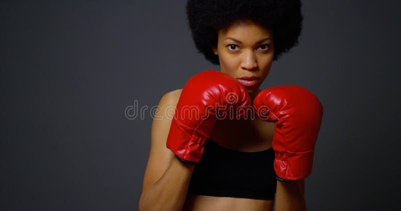 黑人拳击手妇女 免版税库存照片