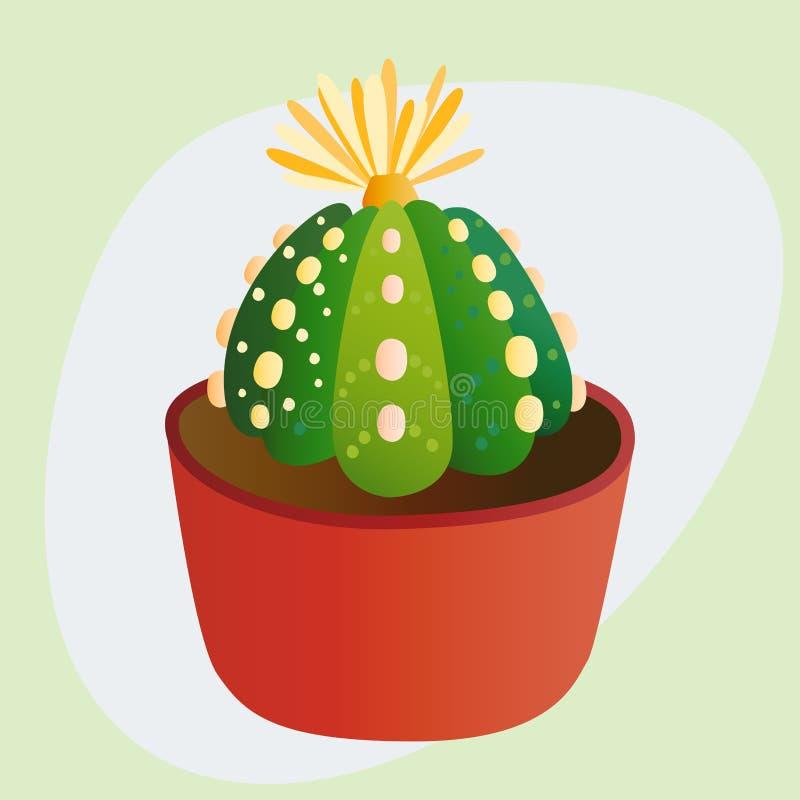 仙人掌平的样式自然沙漠花绿色动画片图画图表墨西哥多汁和热带植物庭院艺术 皇族释放例证