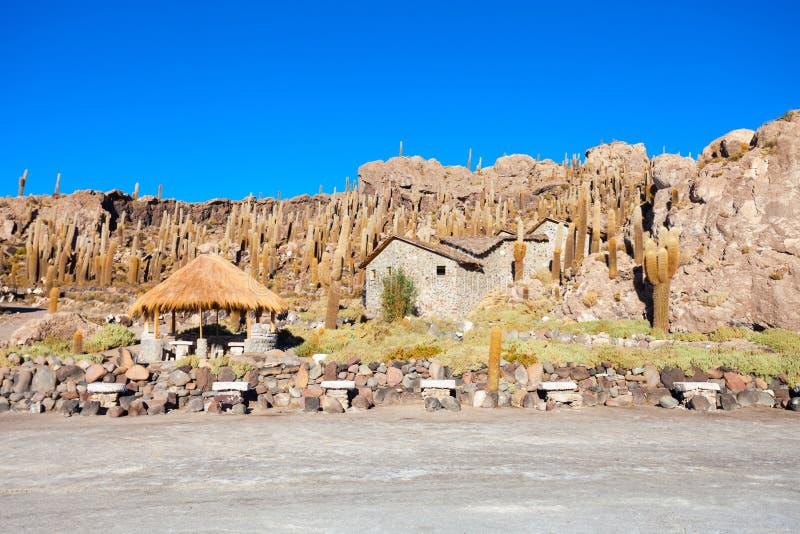 仙人掌海岛, Uyuni 免版税图库摄影