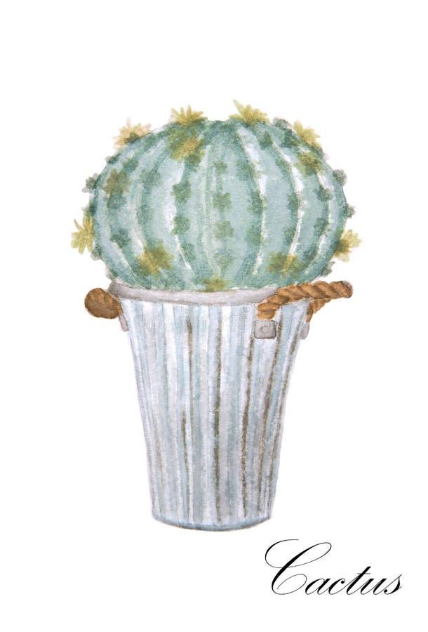 仙人掌水彩绘画在罐的 向量例证
