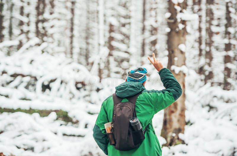人旅客画象盖帽的有背包的在冬天森林里 库存照片