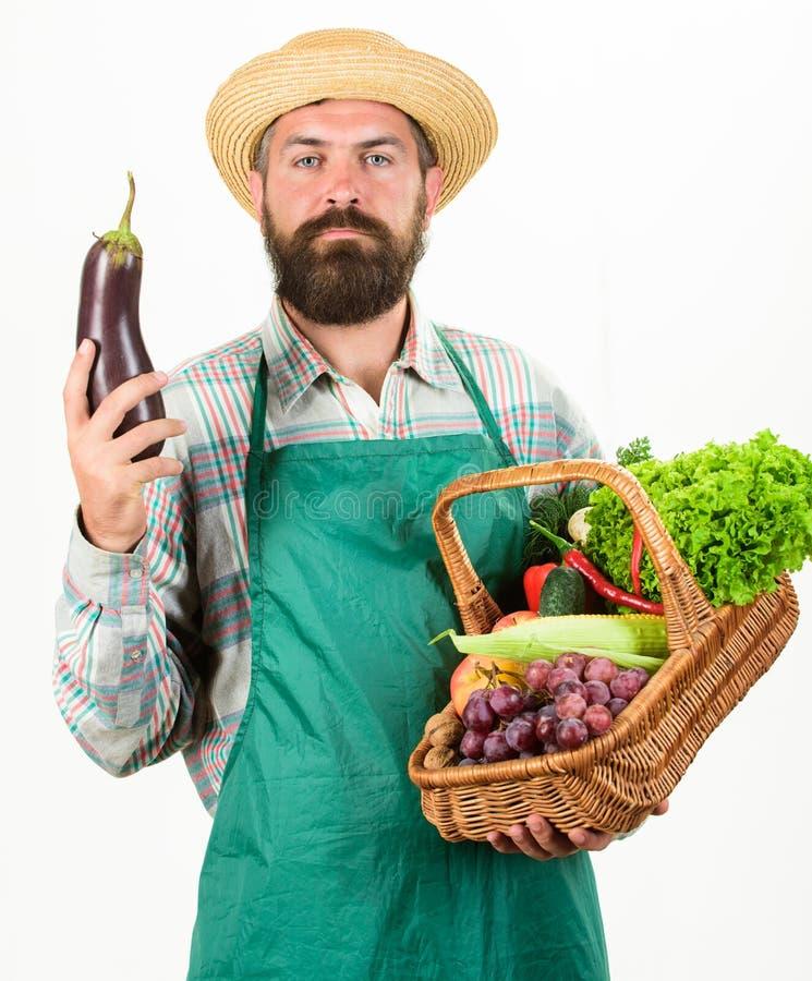 人有胡子的提出的菜被隔绝的白色背景 行家花匠穿戴围裙运载菜 农夫秸杆 库存图片