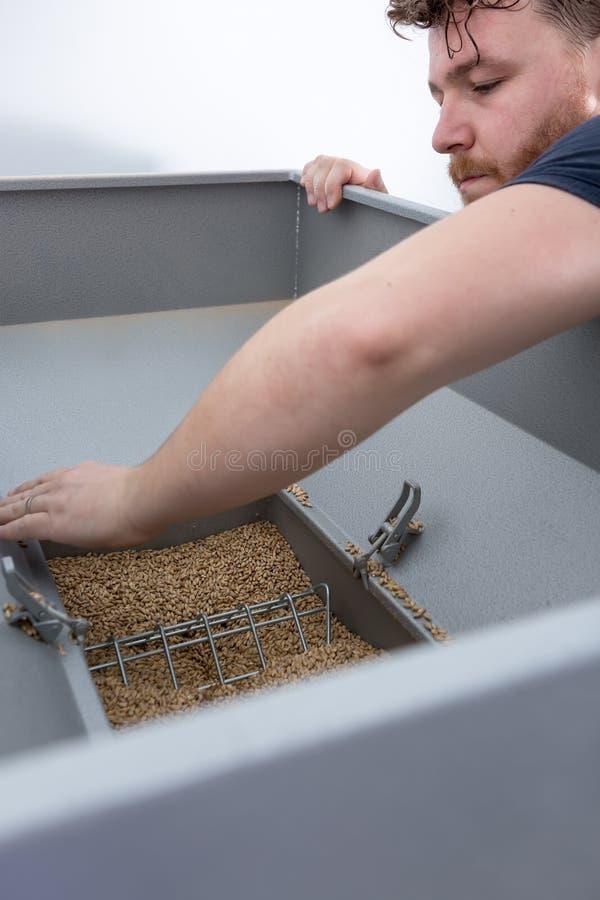 人有麦芽种子的打开容器 免版税库存图片