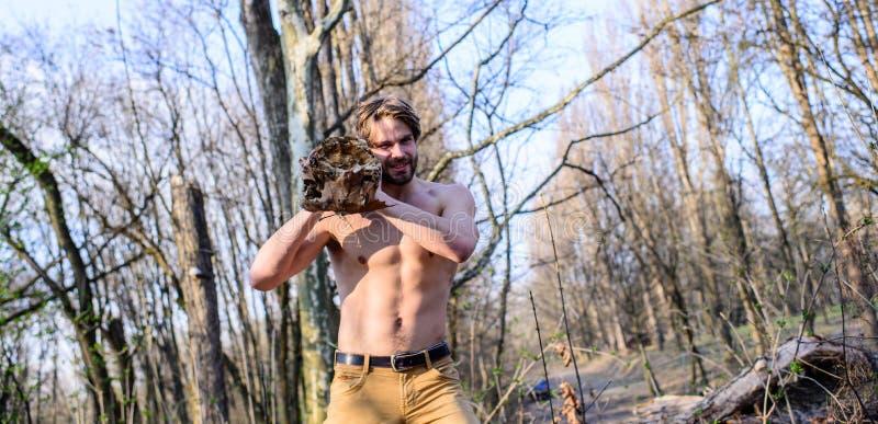 人残酷性感的伐木工人运载大注册肩膀 在森林里供以人员收集木头的残酷坚强的可爱的人 免版税图库摄影