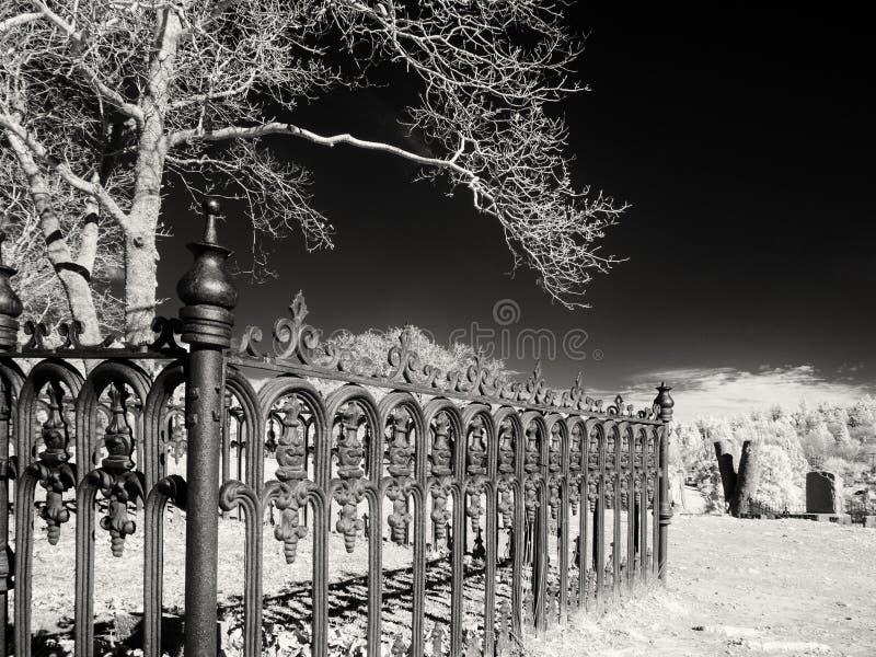 令人毛骨悚然的墓地场面 免版税图库摄影