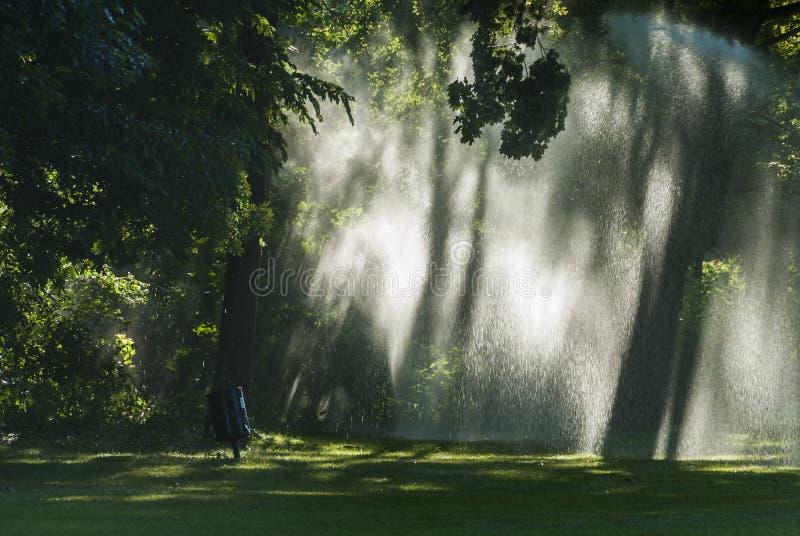 令人毛骨悚然的大气通过灌溉 免版税库存照片
