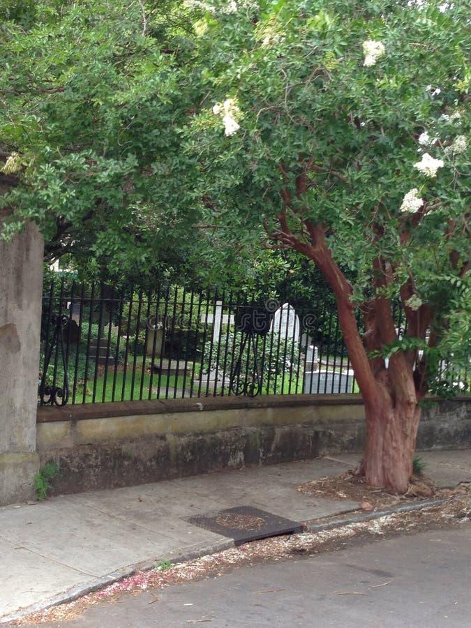 令人毛骨悚然的平安的公墓 库存照片