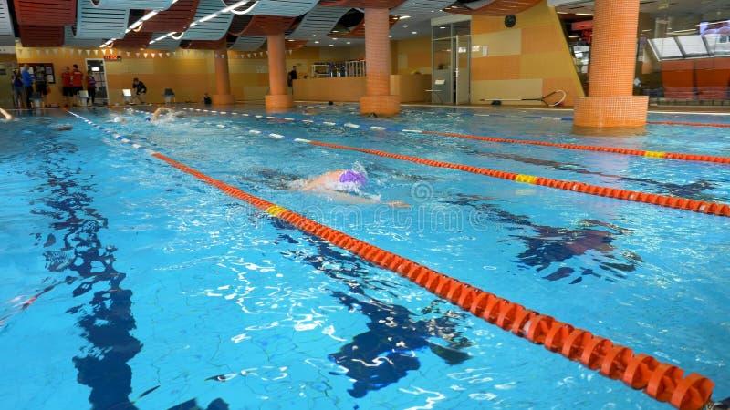人池游泳游泳培训 在水池的适合的年轻男性游泳者训练 游泳在水池的年轻人爬泳 年轻 免版税库存图片