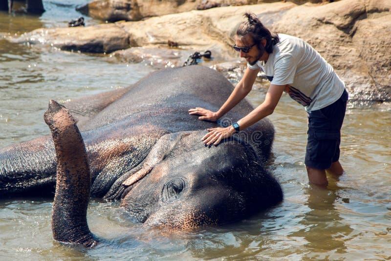 人沐浴一头大象 库存图片