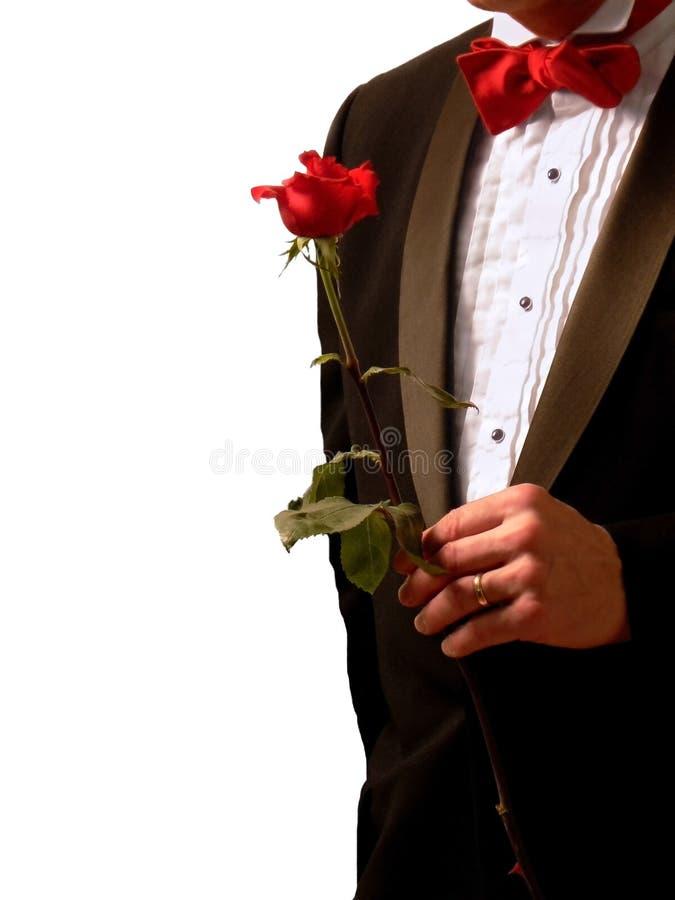 人玫瑰色无尾礼服 免版税库存图片