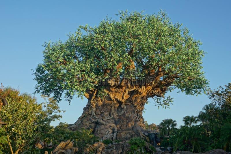 人生的迪斯尼动物界树  免版税库存照片