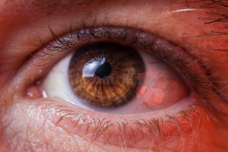 人的哀伤的棕色眼睛,特写镜头细节的宏观图象 库存照片