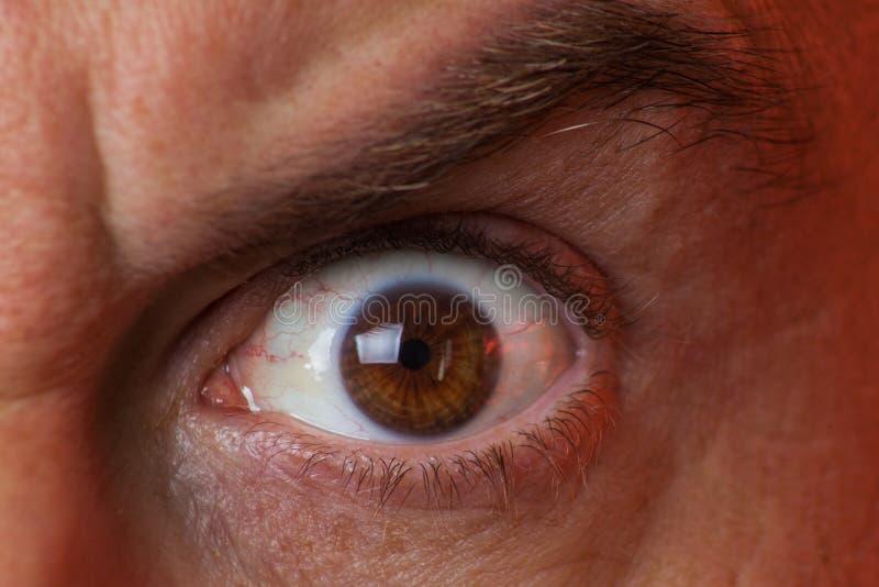 人的哀伤的棕色眼睛,特写镜头细节的宏观图象 免版税库存图片