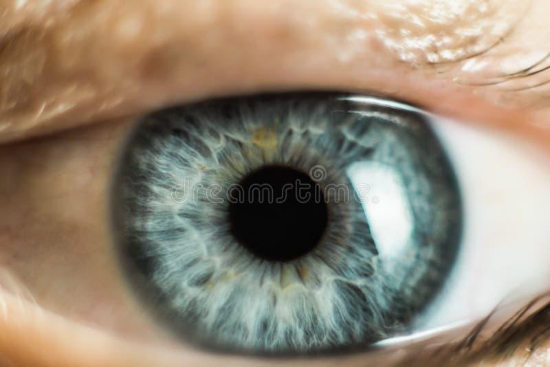 人的女性眼睛宏指令 特写镜头射击了女性灰色-蓝色颜色眼睛与天 免版税库存图片