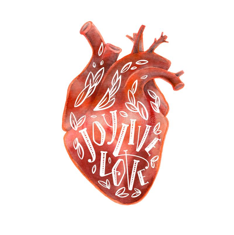 人的心脏现实剪影与字法的 免版税库存照片