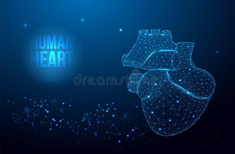 人的心脏解剖学形式线和三角,在蓝色背景的点连接的网络 苹果概念卫生措施磁带 库存例证
