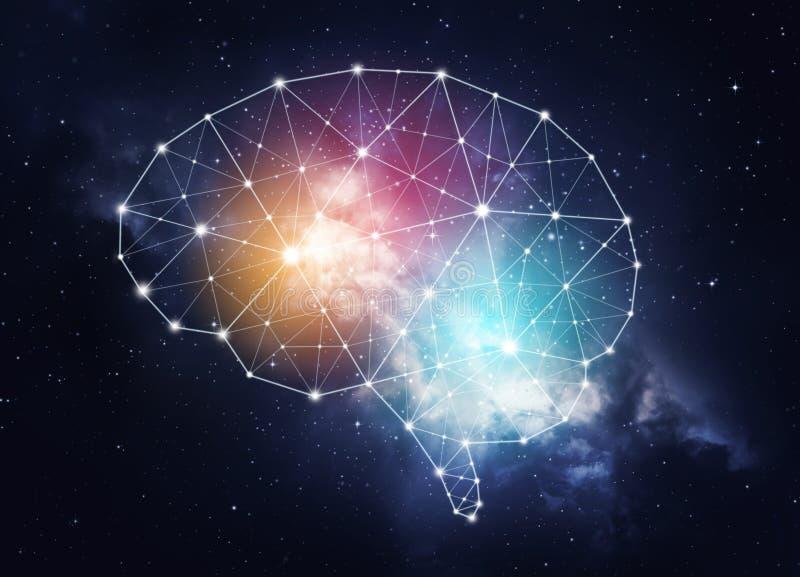人的智力的概念 库存图片